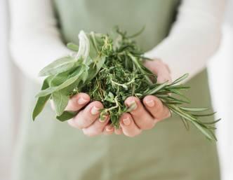 Handful-Herbs