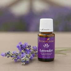 bn_lavender_young_living_essential_oil