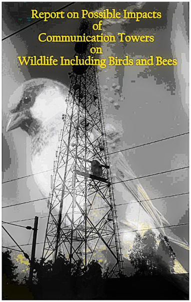 Birds and cell towers